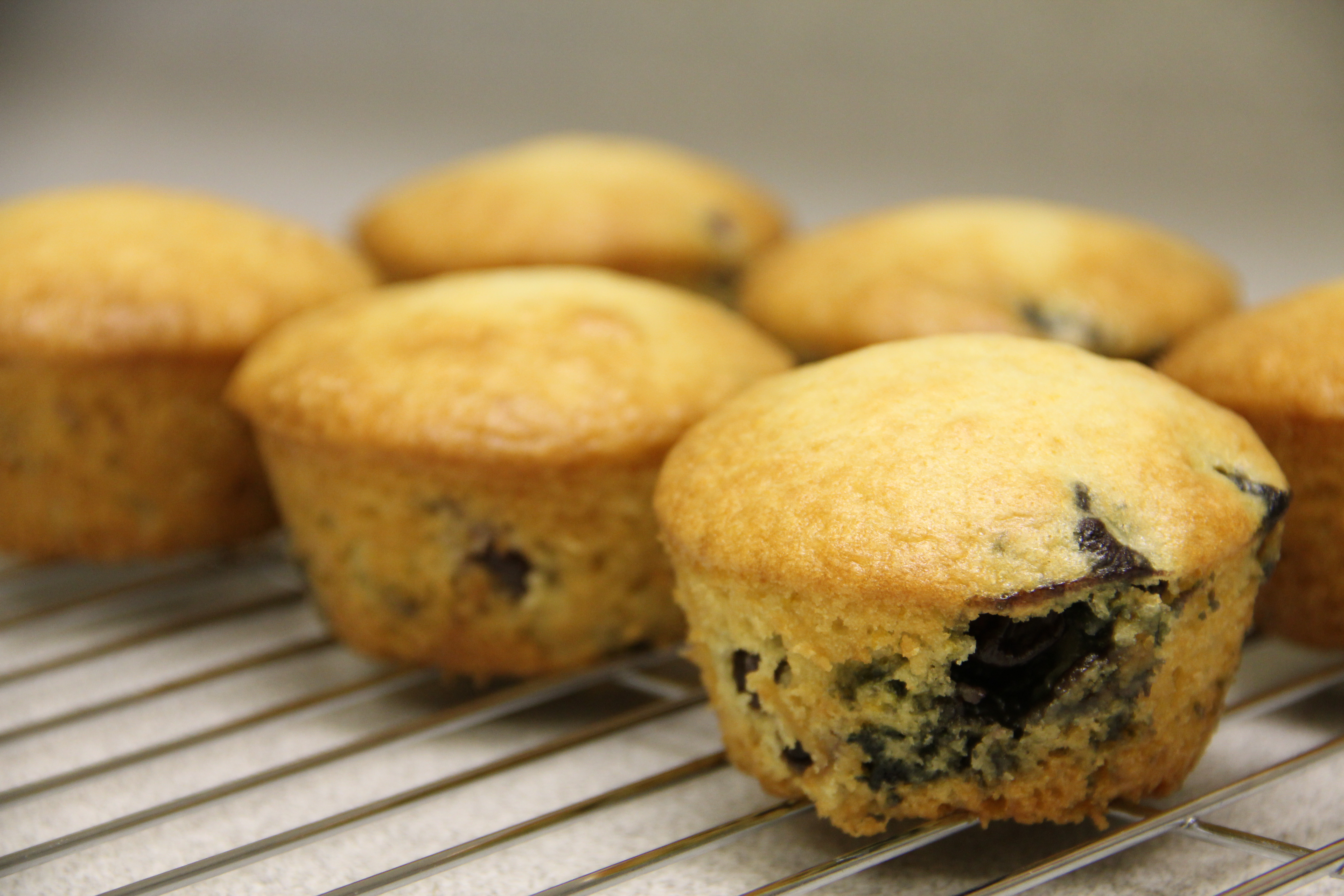 Lemon Blueberry Muffins | Amy's Healthy Baking